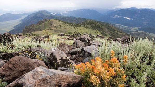 Nevada Mountain Landscape - Best Seasons to Visit